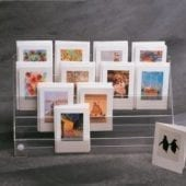 minicard-display-counter-wall-p228-441_thumb